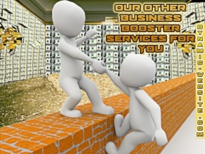 Website online business booster services